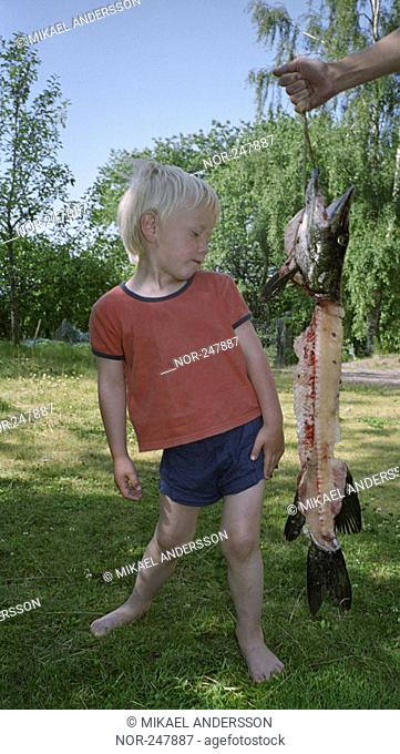 Child next to dead fish, Sweden