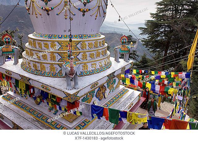 Stupa in Lhagyal Ri, near Tsuglagkhang complex,McLeod Ganj, Dharamsala, Himachal Pradesh state, India, Asia