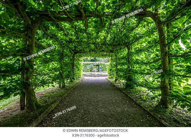 Symmetric pathway through a canopy, Levens Hall , Kendal, Cumbria , UK