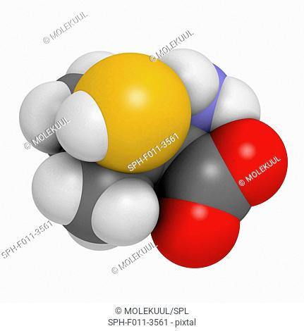 Penicillamine drug molecule. Used as chelating agent and in treatment of rheumatoid arthritis. Atoms are represented as spheres with conventional colour coding:...