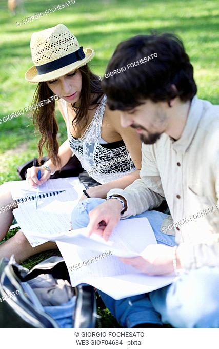 Two students sitting on a meadow in a park looking at notes