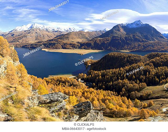 Panoramic of the colorful woods around Lake Sils in autumn Plaun da Lej Upper Engadine Canton of Graubunden Switzerland Europe