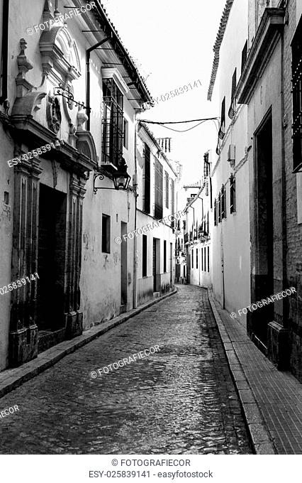 The White Towns of Andalusia, or Pueblos Blancos, are a series of towns and large villages in the northern part of the provinces of Cádiz and Málaga in southern...