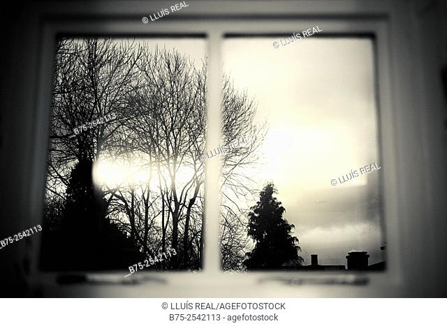 Photographic view through a window of trees and the sky. Buckden Court, Buckden, Yorkshire Dales, England, UK, Europe