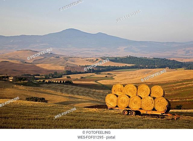 Italy, Tuscany, Bales of straw on trailer