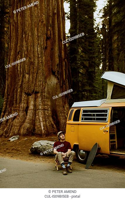 Man sitting by camper van under sequoia tree, Sequoia National Park, California, USA
