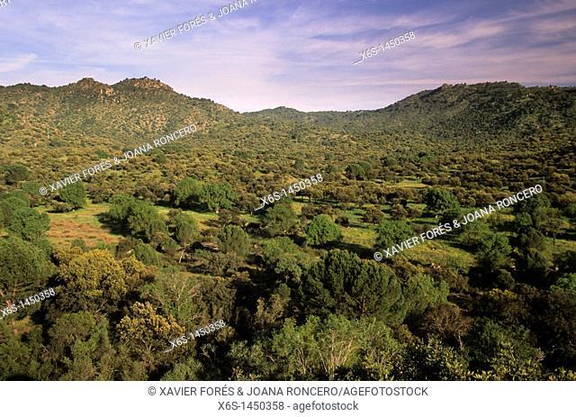 Parque Natural de la Sierra de Cardeña-Montoro, Córdoba, Spain
