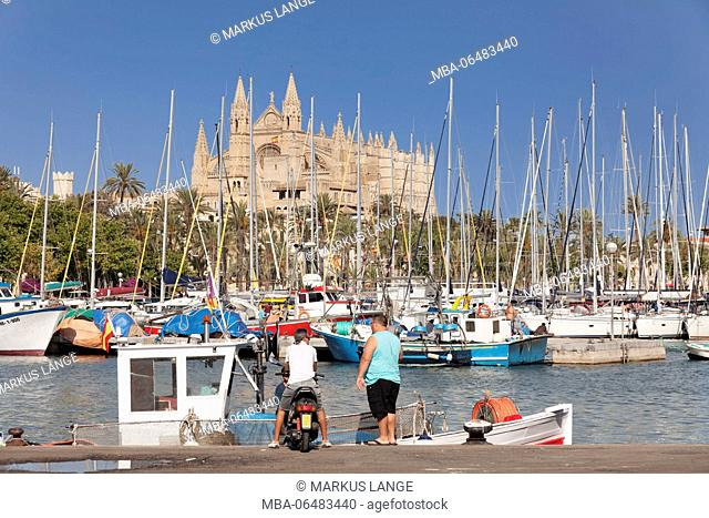 View from the fishing harbour to the cathedral, Palma de Majorca, Majorca, the Balearic Islands, Spain