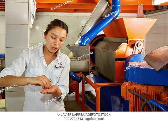 Mucilage Remover, Pulper, Hacienda San Alberto, Cafetal, Coffee plantations, Coffee Cultural Landscape, Buenavista, Quindio, Colombia, South America