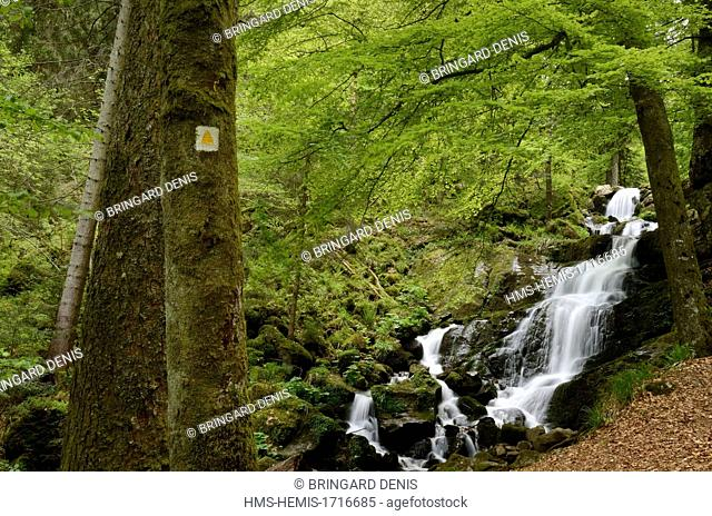 France, Bas Rhin, Natzwiller, the Serva waterfall below the Champ du Feu