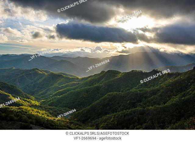 Rays of light on the forests in Apennines after a storm, Foreste Casentinesi NP, Emilia Romagna NP, Italy