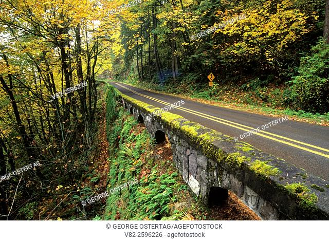 Historic Columbia River Highway, Mt Hood National Forest, Columbia River Gorge National Scenic Area, Oregon