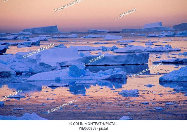 Icebergs and pack ice. South of the Lamaire Channel. Antarctic Peninsula. Antarctica