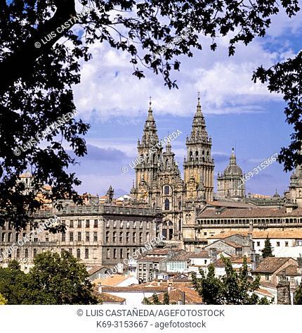 Santiago de Compostela. Galicia. Spain