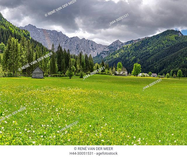 Meadows in bloom at the Bodental, Bodental, Österreich Austria