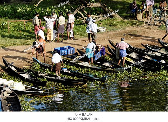 BACKWATERS OF NEDUMUDI IN ALAPPUZHA DIST AND PEOPLE WITH DAYS CATCH