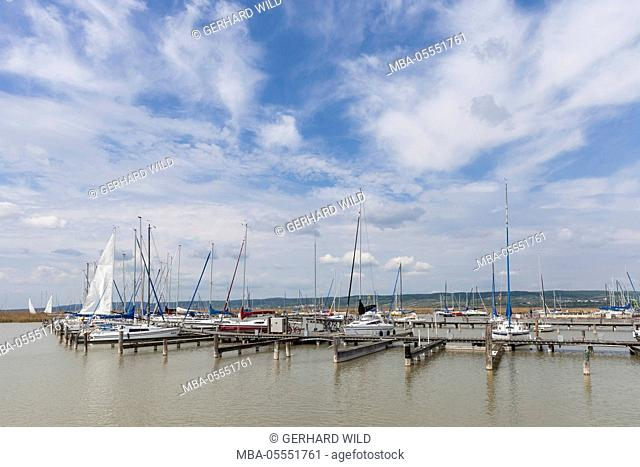 Marina in Breitenbrunn at the Lake Neusiedl, Burgenland, Austria, Europe