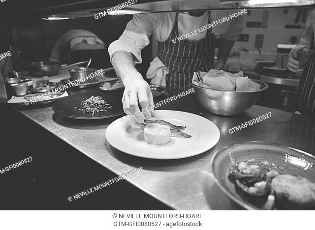 Chef plating food in restaurant