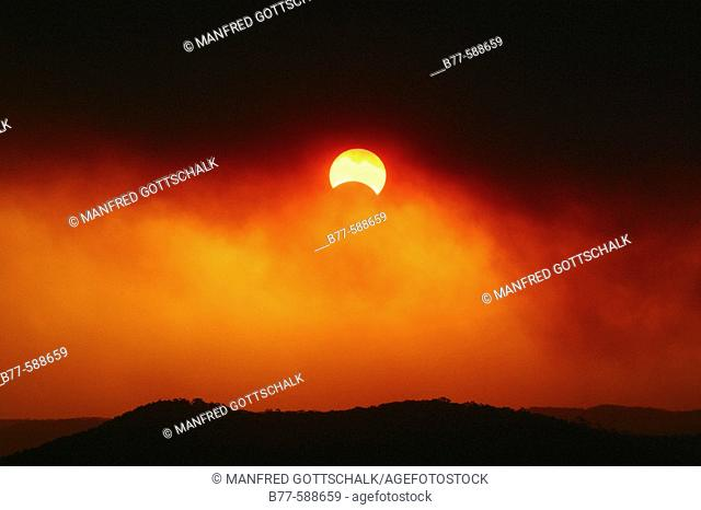 Smoke from bushfires in Ku-ring-gai Chase National Park, north of Sydney allows perfect viewing of a partial eclipse of sun and moon on 4th December 2002