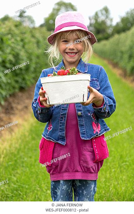 Portrait of happy little girl holding box of strawberries on strawberry field
