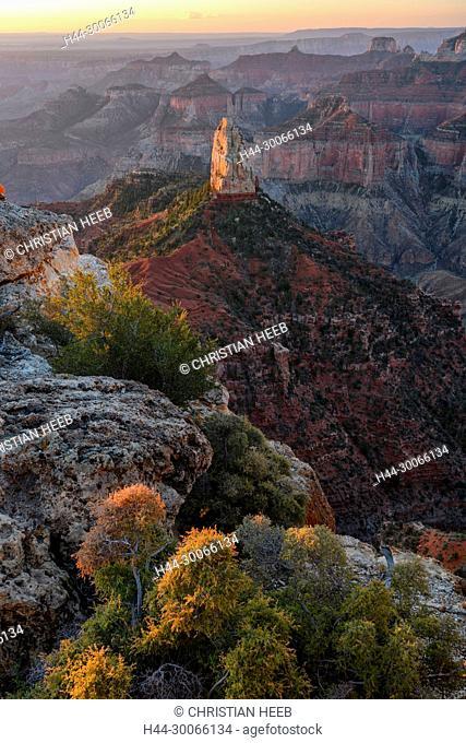 North America, American, USA, Desert Southwest, Colorado Plateau, Arizona, Grand Canyon National Park, North rim, Mount Hayden