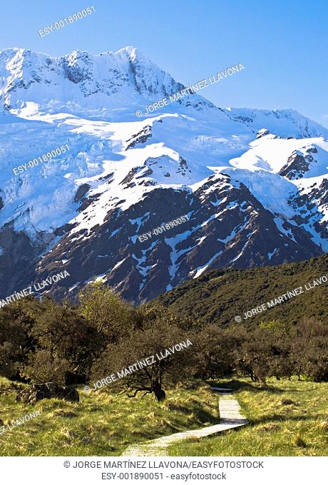 Mount Cook Walking Path