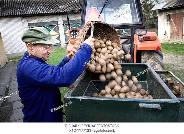 Farmer with potatoes ready for seeding.  Gmina Przylek, Zwolen county, Poland