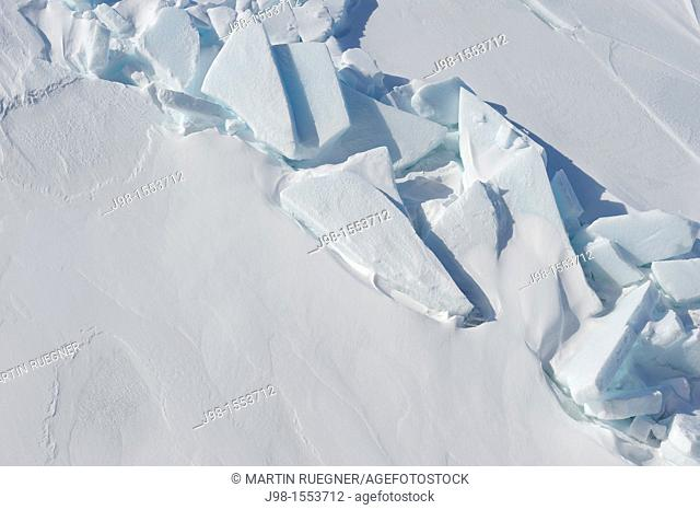 Peaces of ice on the surface of pack ice  Weddell Sea, Antarctic Peninsula, Antarctica