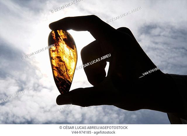"""Piece of amber found in the """"Cueva del Soplao"""", Valle del Nansa, Cantabria, Spain"""