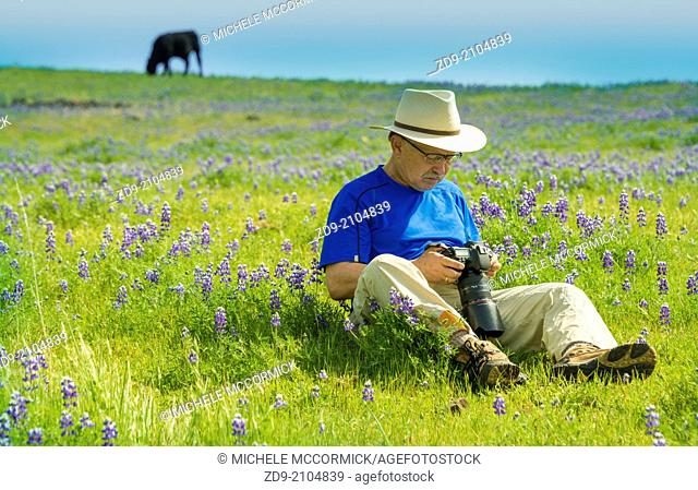 A photographer contemplates the best shot in a beautiful field of flowers