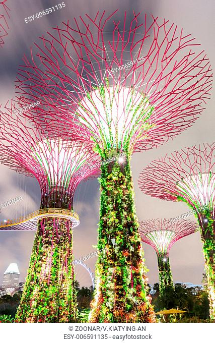 Super Tree Grove in Singapore