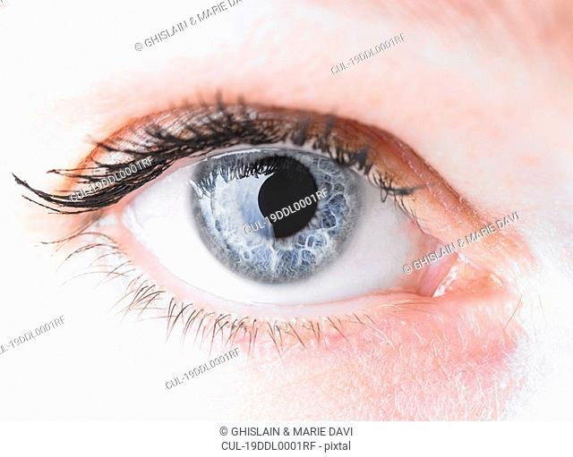 Close up of a woman\'s eye