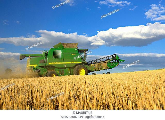 Germany, Saxony-Anhalt, Saalekreis (district), combine harvester, harvest