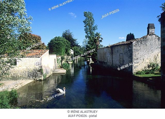Charente - Grande Champagne - Bassac