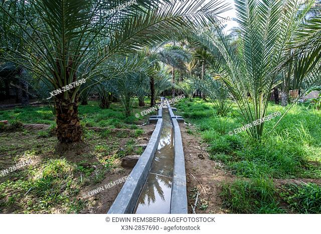 United Arab Emirates - View of the Al Ain Oasis and its centuries old irrigation system. It is the largest oasis in Abu Dhabi, UAE