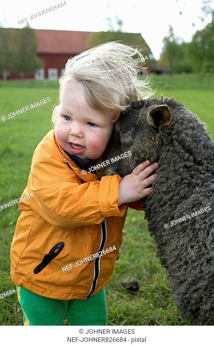 Child hugging a lamb, Sweden