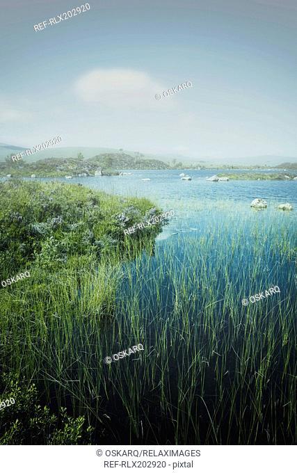 Lake moor grass fog mist islands rocks moody water