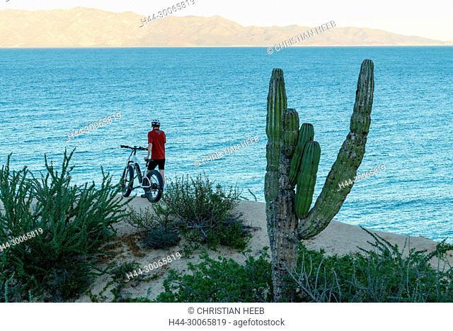 Central America, Mexico, Mexican, Baja California, Sur, El Sargento