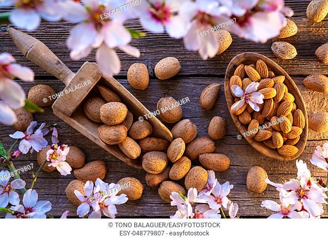 Almond spring blossom harvest on wooden board
