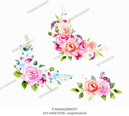 Set of the floral arrangement set Pink roses and peonies with green leaves. Vector romantic garden flowers
