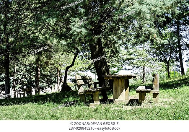 Wooden benches and a table in the woods
