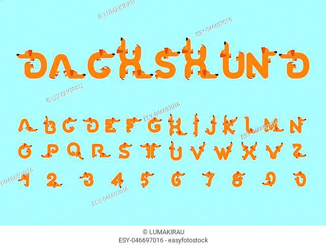 Dachshund font. Dog alphabet. Lettering home animal. ABC pet