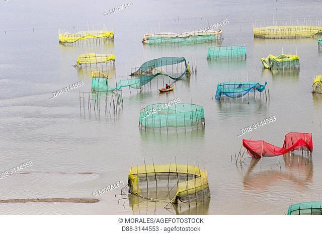 Chine, Chine du Sud, Province de Fujiang, Région de Xiapu, Cages avec filets pour l'élevage de poissons en pleine mer, Pisciculture