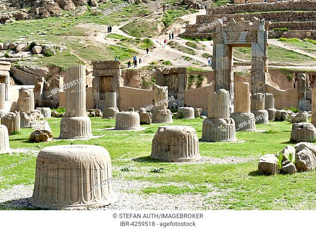 Ruins, bases of columns, Hundred Column Hall, ancient Persian city of Persepolis, UNESCO World Heritage Site, Fars Province, Iran