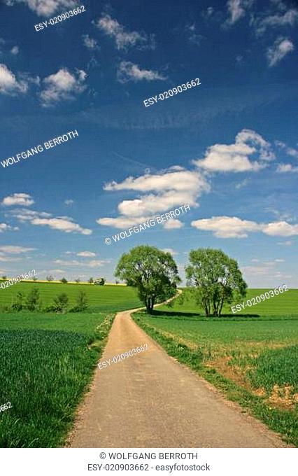 Landschaft mit Feldweg