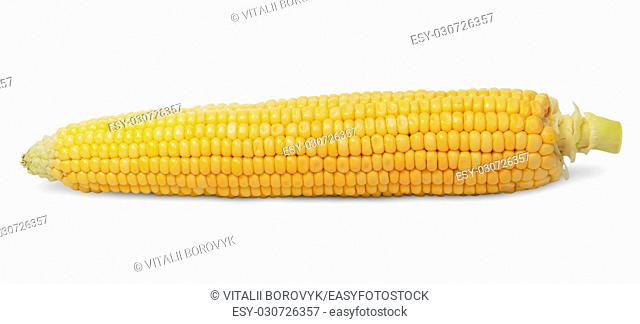 Purified ear of corn isolated on white background