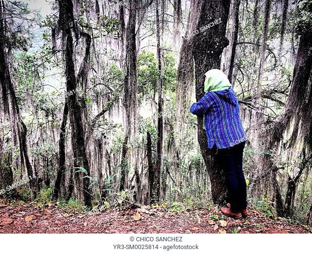 A Mexican woman hugs a tree in a forest in Lachatao, in the Sierra Norte of Oaxaca, Mexico