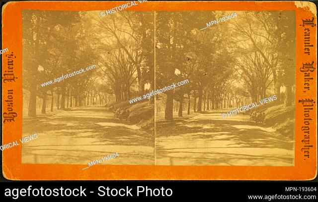 Beacon St. Mall. Additional title: Boston views. Baker, Leander (ca. 1842-1925) (Photographer). Robert N. Dennis collection of stereoscopic views United States...