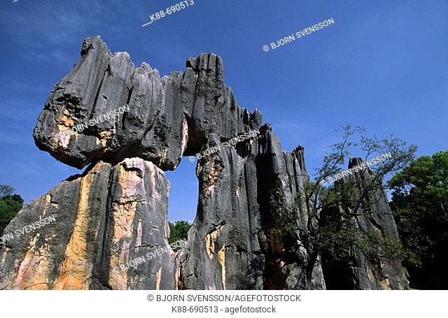 Shilin stone forest, Yunnan, China