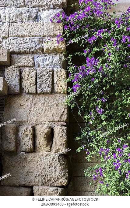 Castle of Almodovar del Rio, Detail of stone wall and beautiful purple flowers, It is a fortitude of Moslem origin, it was a Roman fort and the current building...